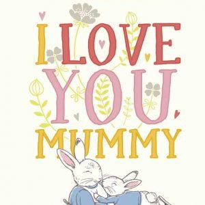 Peter Rabbit I Love You Mummy Book