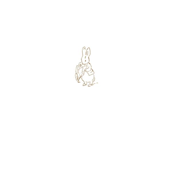 Peter Rabbit & Lettuce Sketch Greetings Card