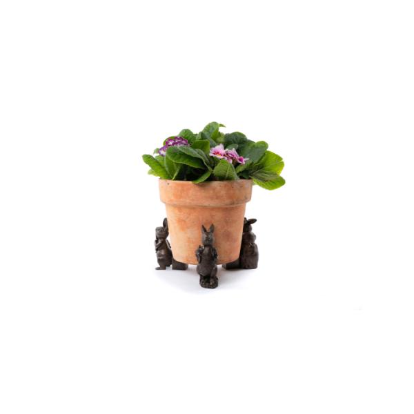 Peter Rabbit Potty Feet Bronze Set 1