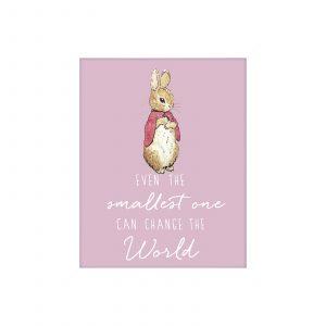 Flopsy Bunny 'Change the World' Framed Print