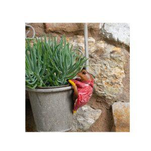 Mr Jeremy Fisher Plant Pot Buddy
