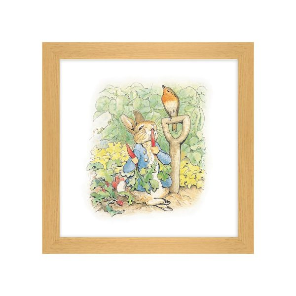 Adventures of Peter Rabbit 1 Framed Print